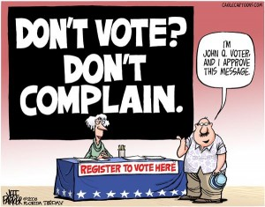 vote initiative