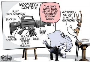 gun control