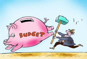 budget-constantin-cagle-Nov.-26-2013-300x203