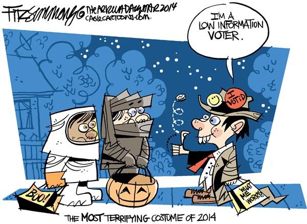 Low info voter