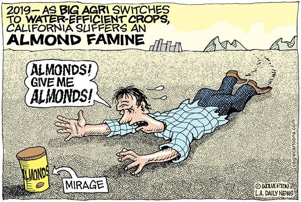 almond famine
