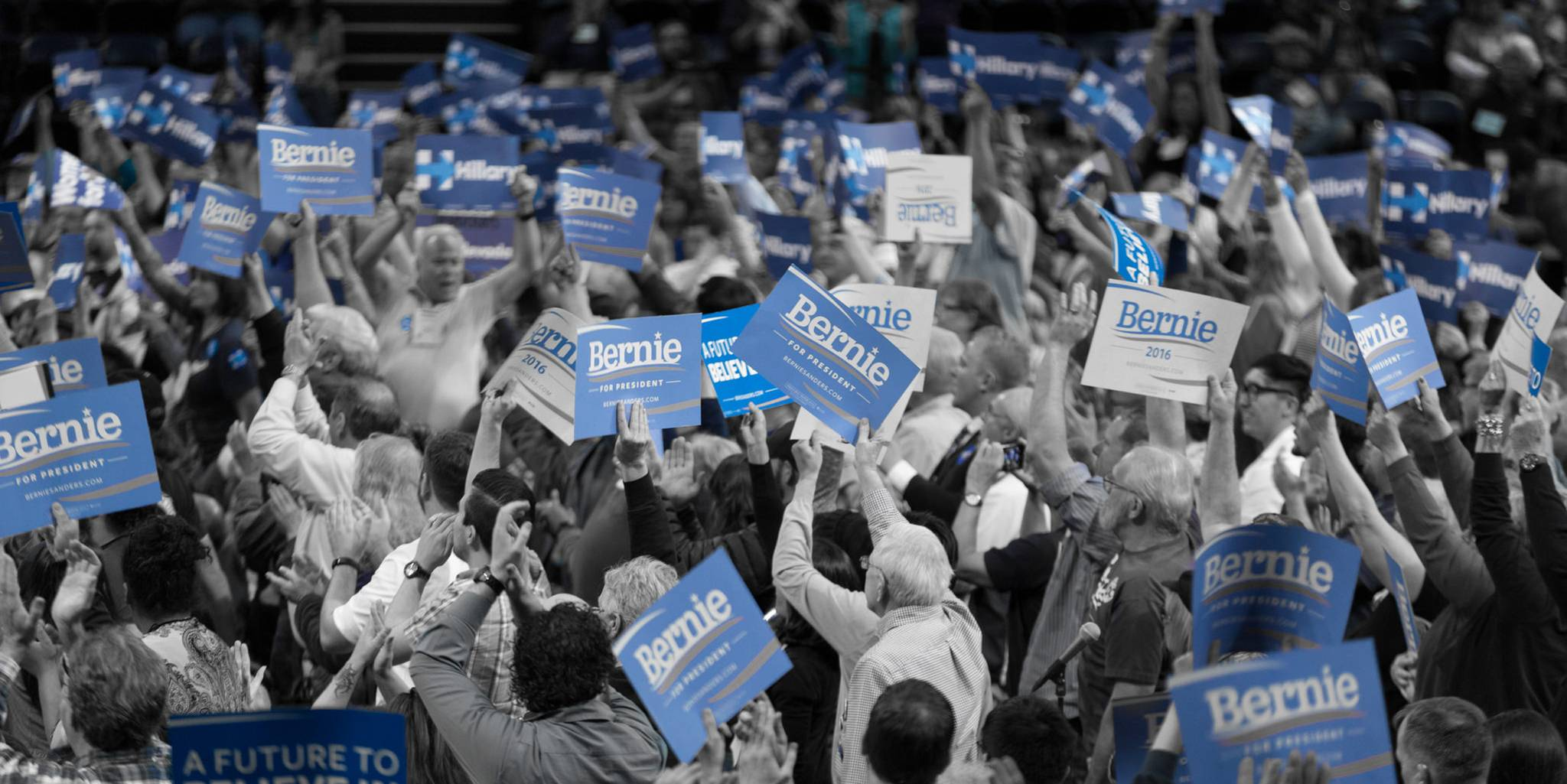 Bernie signs