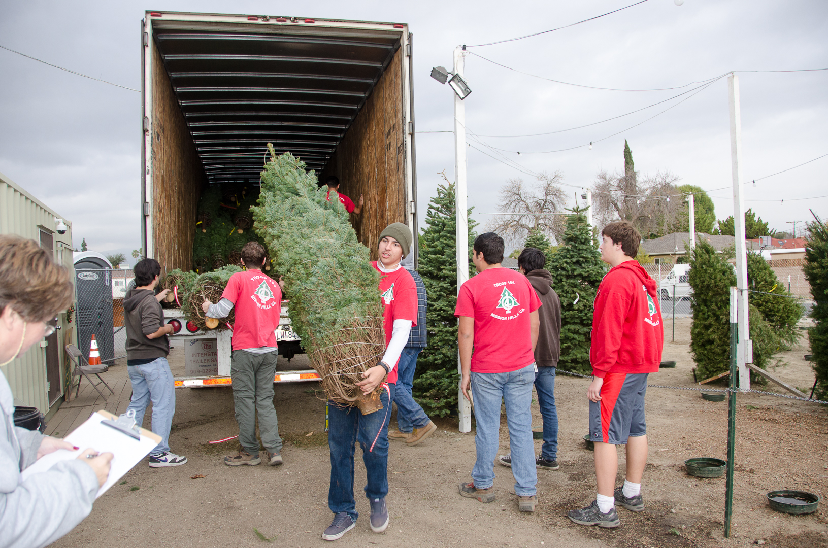 Christmas-tree-lot-unloading-DSC_0115